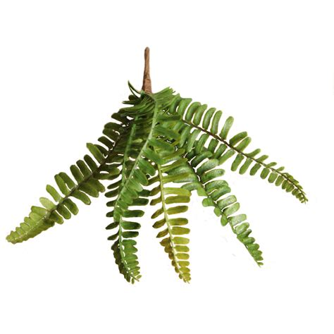 fern decor fern craft wedding floral green decor artificial silk