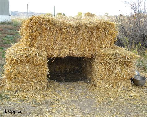 straw bale dog house the big 3 0 little straw houses extreme makeover