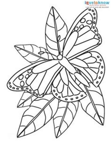 christian butterfly coloring pages 1000 images about adult scripture coloring pages on