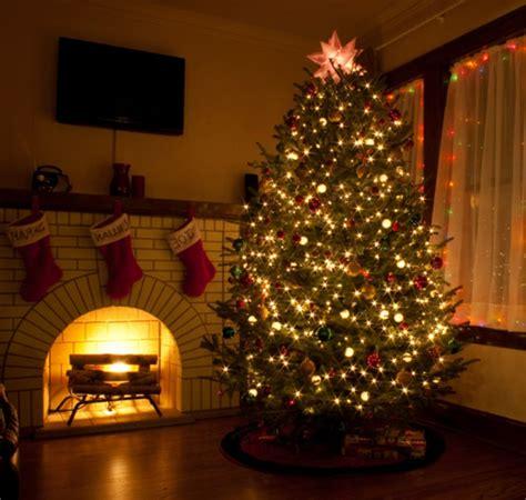 weihnachtsbaum beleuchtung weihnachtsbaum mit beleuchtung 40 unikale fotos