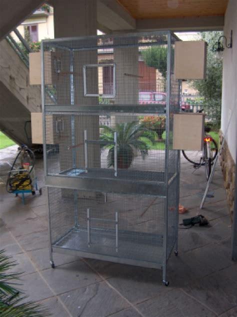 gabbia per cocorite dimensioni dimensioni voliera per calo