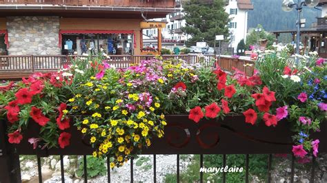 fiori sui balconi mamma aiuta mamma fiori sui balconi delle di