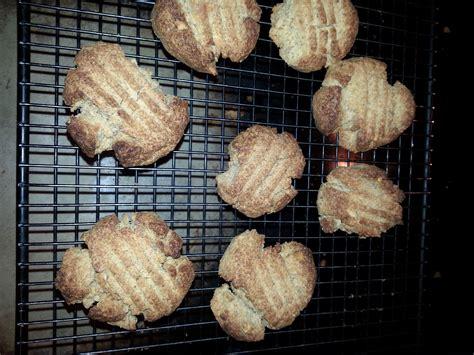 Elanas Pantry Cookies by Elana S Pantry Peanut Butter Cookie Rock Solid 50