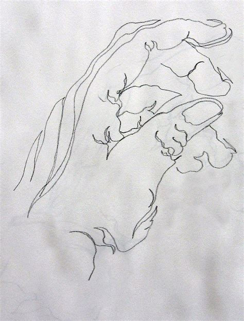 line drawing sketches continuous line drawing leslie white