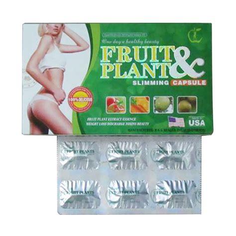 Fruit Plant Obat Pelangsing Badan Uh Herbal Alami jual fruit plant obat herbal pelangsing tubuh alami harga kualitas terjamin blibli