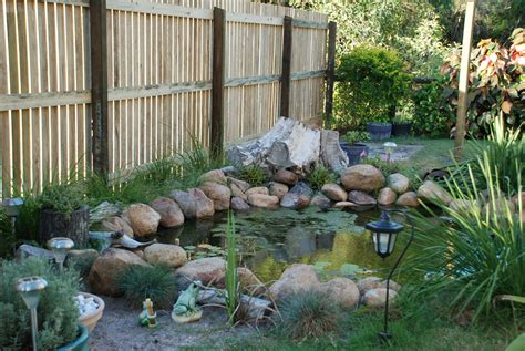 besta village how to build a frog pond in your backyard 28 images 15