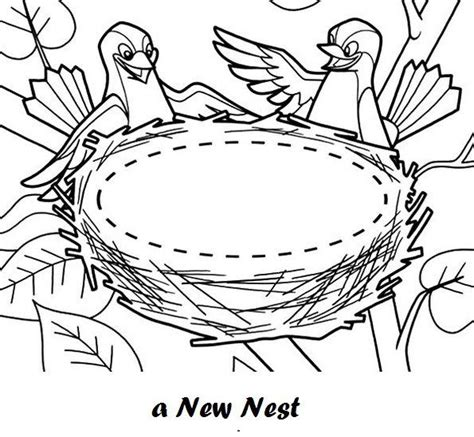 Coloring Page Nest by Bird And New Nest Coloring Sheet Coloring Pages