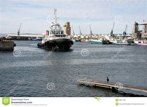 tugboat and the bird tugboat the bird tug boat in harbor royalty free stock