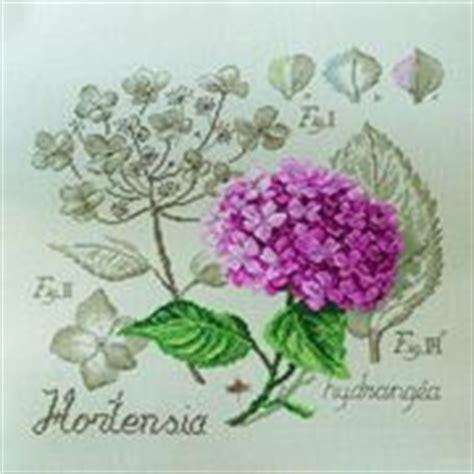 linguaggio dei fiori girasole girasoli significato significato fiori girasoli