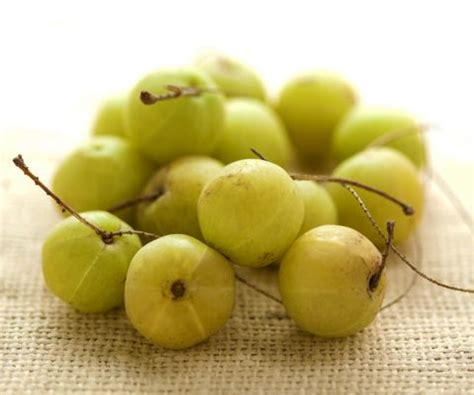 house of nutrition 7 health benefits of amla the power house of nutrition