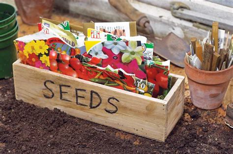 seeds for vegetable garden vegetable garden seeds erikhansen info