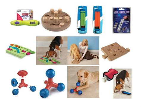 interactive toys for dogs interactive toys 187 my poochie s paradise where your