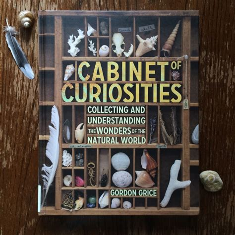 Cabinet Of Curiosities by Awakening With Cabinet Of Curiosities Sturdy For