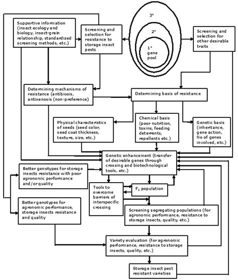 resistor flow chart sustainability free text food legumes for resistance to storage insect pests