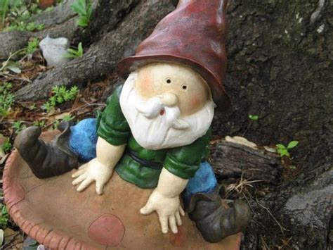 cute garden gnomes pinterest the world s catalog of ideas