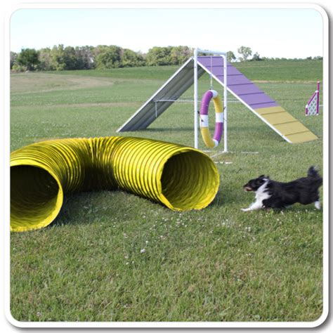 agility tunnel 10 agility tunnels for and exercise