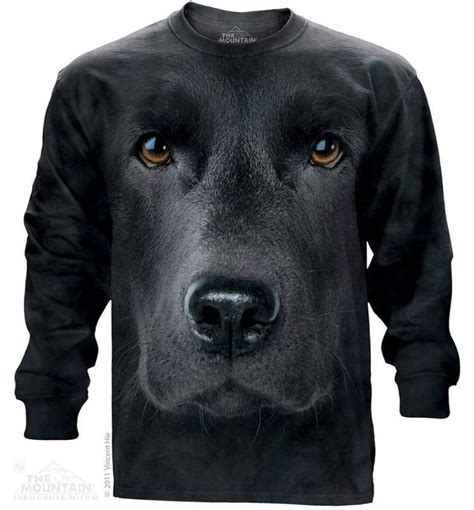 Hoodie Laboratories Hitam 2sweater 17 best images about sleeve t shirts on