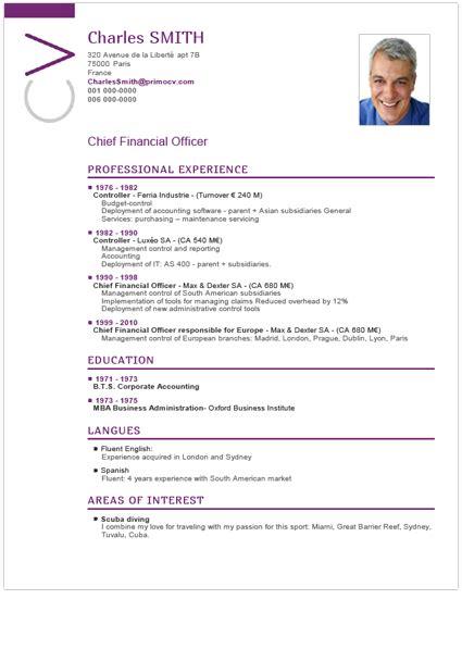 Modelo De Un Curriculum Vitae Profesional Modelo De Curr 237 Culo Cronol 243 Gico