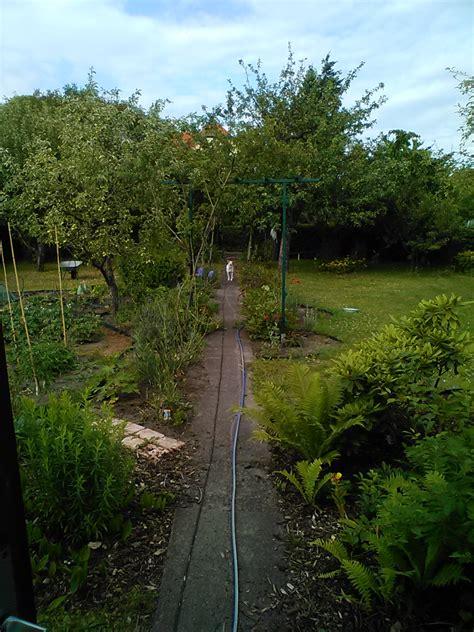 Garten Pflanzen Juli by Juli 2015 Das Reh Im Garten Gartenblog