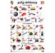 Related Pictures Tamil Alphabet Chart For Kids Car Stock