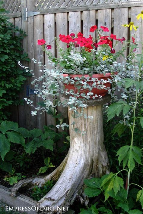gorgeous flower planter ideas  home gardens
