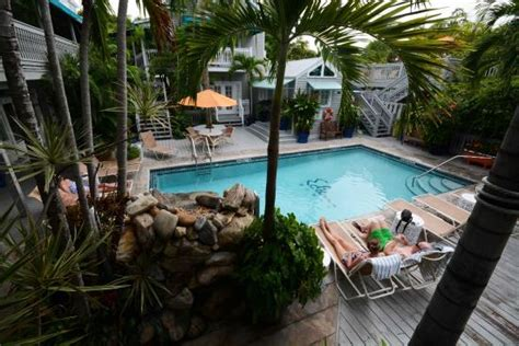 eden house key west eden house pool picture of eden house key west tripadvisor