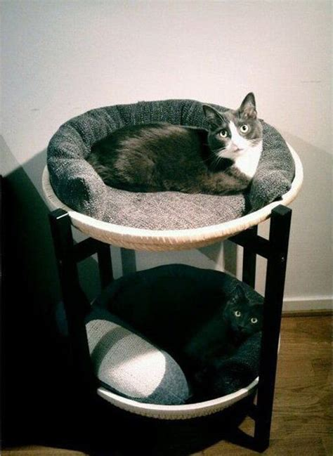cat beds for large cats double cat beds
