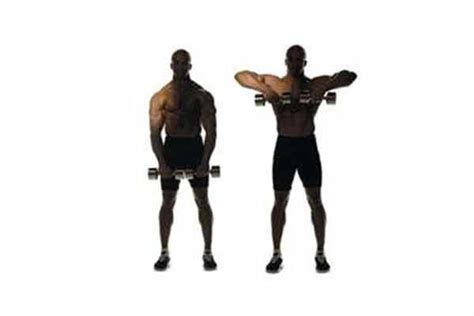 chest exercises with dumbbells no bench neck muscles structure exercises problems diagnosis