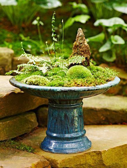 dish garden ideas 25 best ideas about dish garden on terrarium