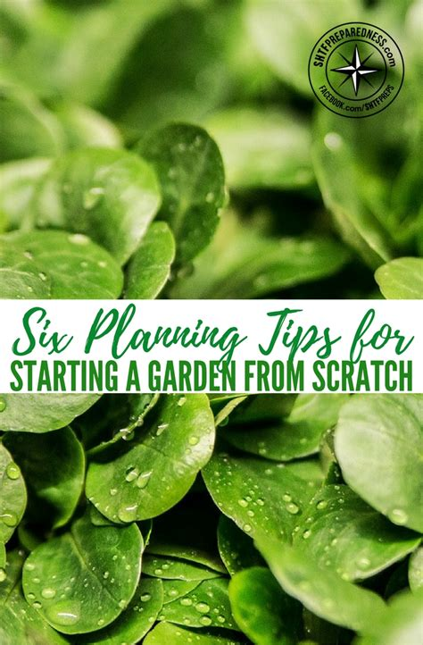 six planning tips for starting a garden from scratch
