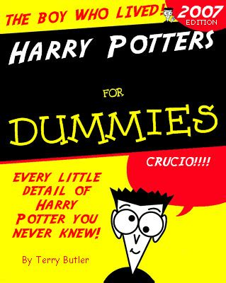 Upholstery For Dummies by Harry Potter For Dummies Me And My Friend Tim Worked On