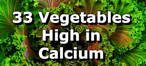 vitamin d vegetables in india 33 vegetables high in calcium