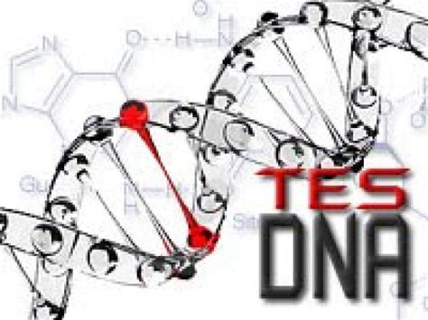 Berapa Lama Seseorang Dapat dengan tes dna kini bisa diketahui sisa usia kita hidup