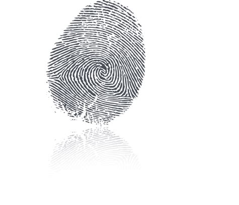 Level 2 Background Check Ahca Fingerprinting Services Testing Background Check Clearwater Fl