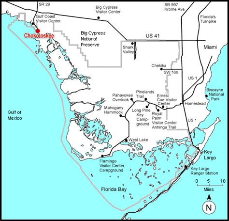 everglade city florida map girlshopes