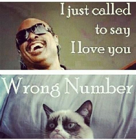 Stevie Wonder Memes - stevie wonder funny quotes quotesgram