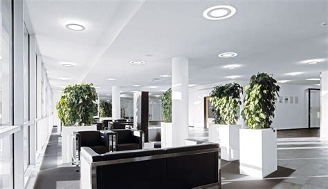 natural light ls for office how natural office lighting solutions can improve business