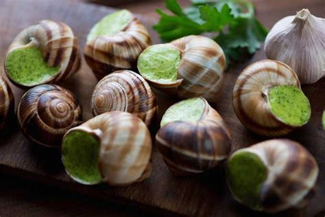To Vacuum by How To Prepare And Serve Escargot Foodal
