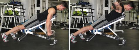 bent over lateral raises on incline bench rear lateral raise prone 30 degree incline