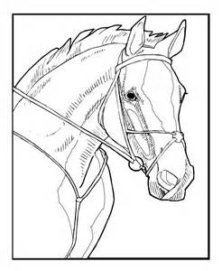 realistic horse coloring pages coloring pages