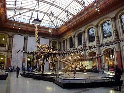 best museum the top 10 museums to visit in berlin
