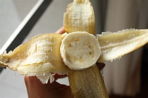 small banana vs regular banana difference redflagdeals com forums red yellow green om sweet om
