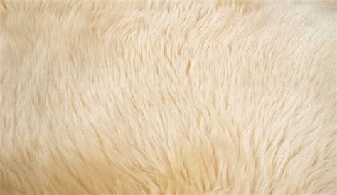 Karpet Bulu Kambing mogo zoo