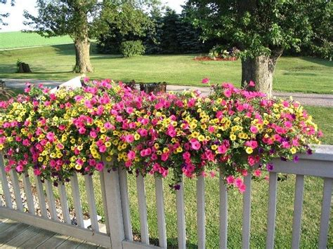 patio railing planters back deck ideas on a budget at back deck home and railing planters