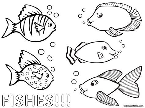 fish to color coloring pages of fish coloring pages to and print