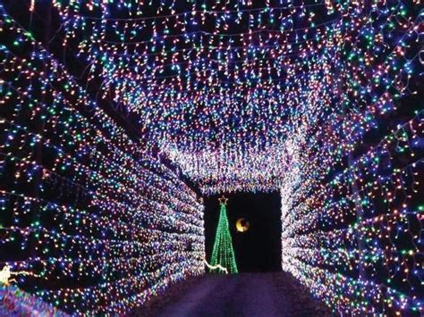 very pretty review of land of lights athens texas