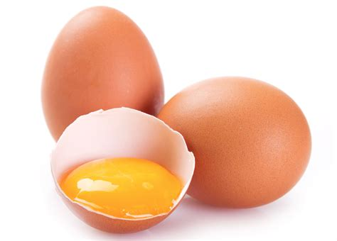 can dogs eat eggs png yolk transparent yolk png images pluspng