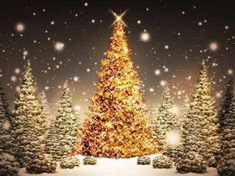 2014 christmas night backgrounds presnetation ppt