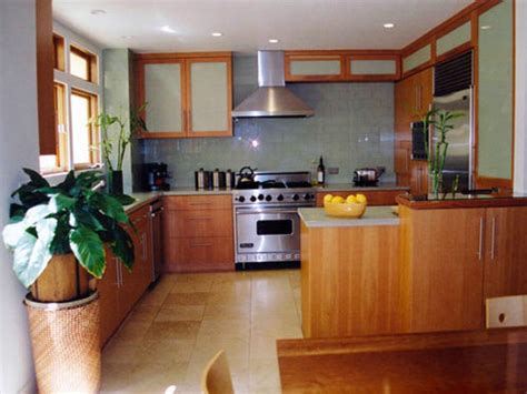 Small Kitchen Design Indian Style by Indian Kitchen Designs For Small Kitchen Home Design Ideas