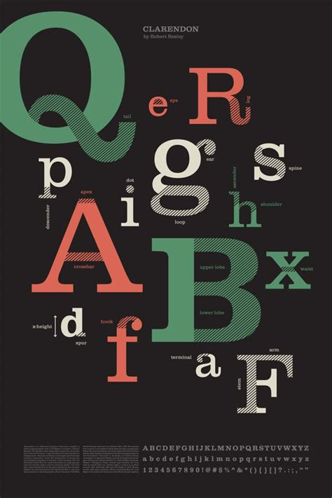 typography anatomy poster anatomy of type poster on behance clarendon font family